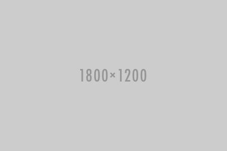 Las Vegas weddings specials