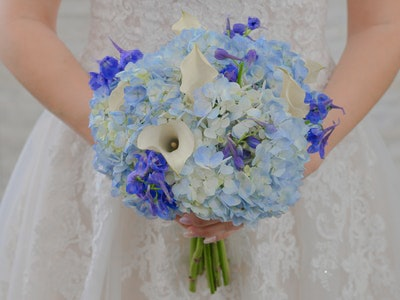 Cordelia Cascade Bouquet with hydrangea flowers mixed with calla lilies and bella donna